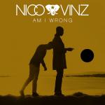 Nico-Vinz-Am-I-Wrong